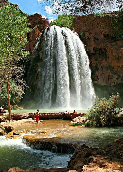 Chute Grand Canyon havasu falls - grand canyon national park - arizona - usa -