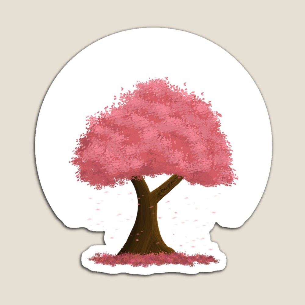 Absorb The Leaves Beauty Blossom Trees Cherry Blossom Tree Cherry Blossom