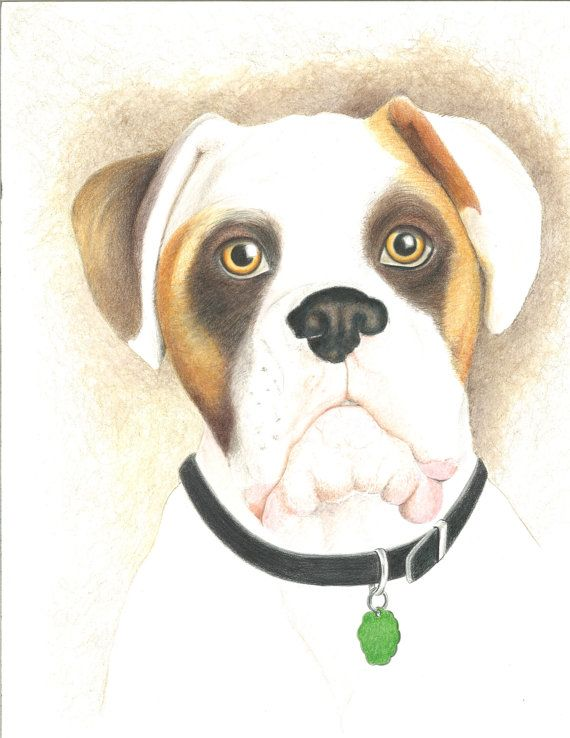 Buster by RavensFantasyArt on Etsy, $10.00