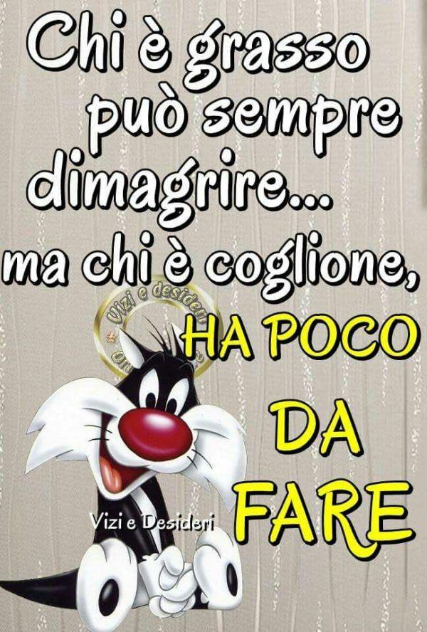 145 immagini e stati divertenti per whatsapp whatsapp for Vignette simpatiche buongiorno