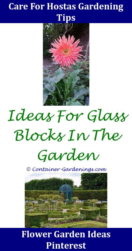Long Back Garden Ideas,fairy garden ideas landscaping.North Facing ...