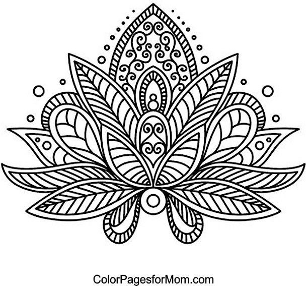 Bujo Doodle Inspo Paisley Coloring Pages Flower Coloring Pages Mandala Coloring Pages