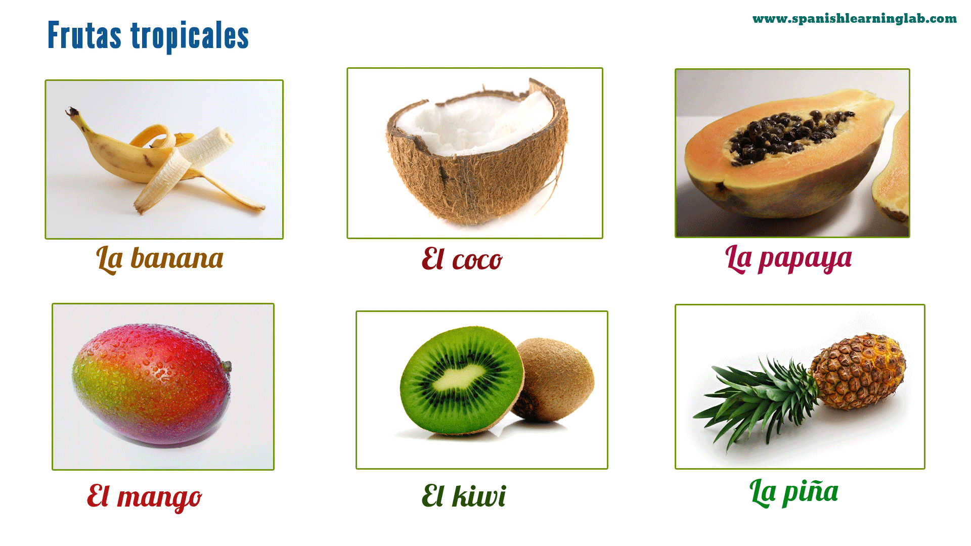 these are some common tropical fruits in spanish including