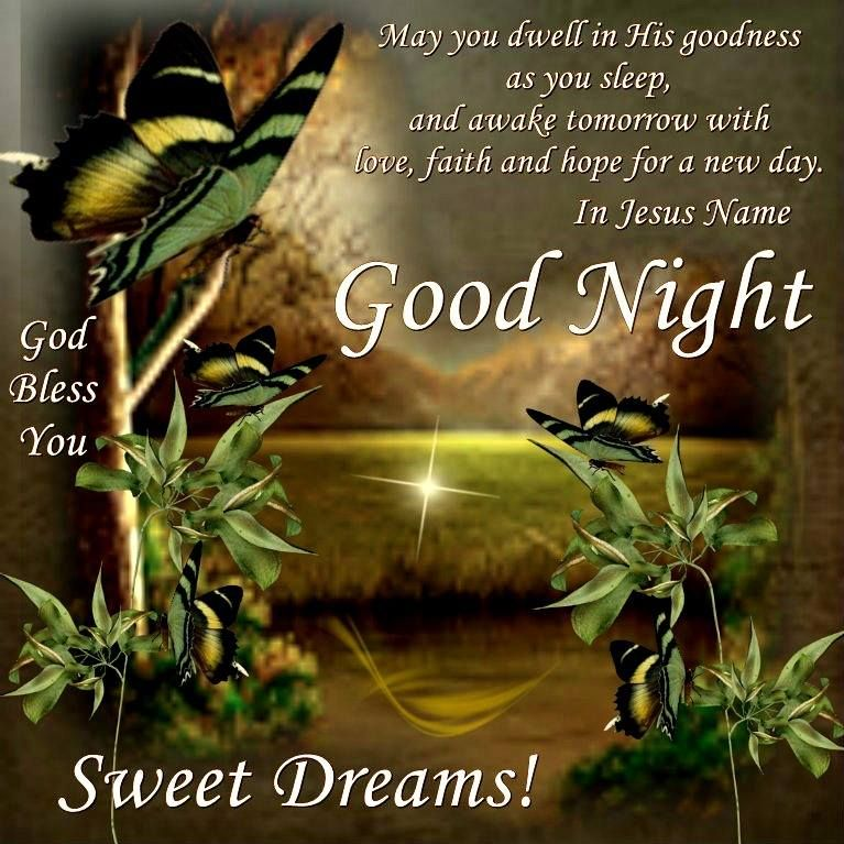 Good Night Everyone God Bless You Goodnight