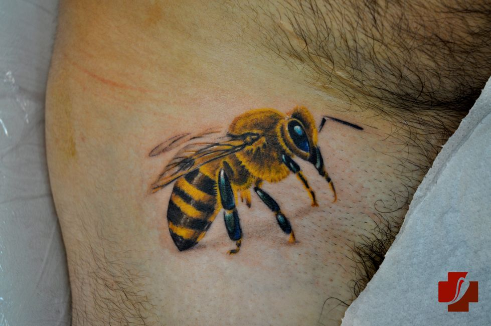 Animal Tattoo Designs, Bee Tattoo Designs For Men: Bee Tattoo Design ...