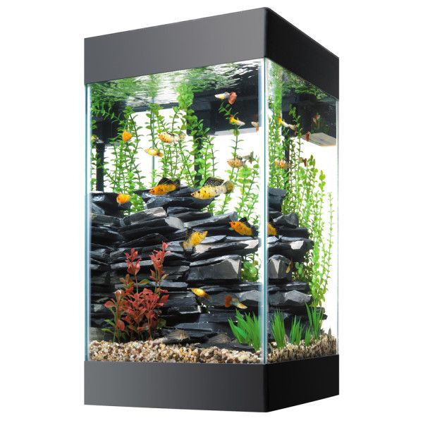 Tall And Beautiful Just For Your Home Aqueon 15 Gallon Column Deluxe Aquarium Kit Petsmart 79 99 Cool Fish Tanks Aquarium Fish Tank Fish Tank