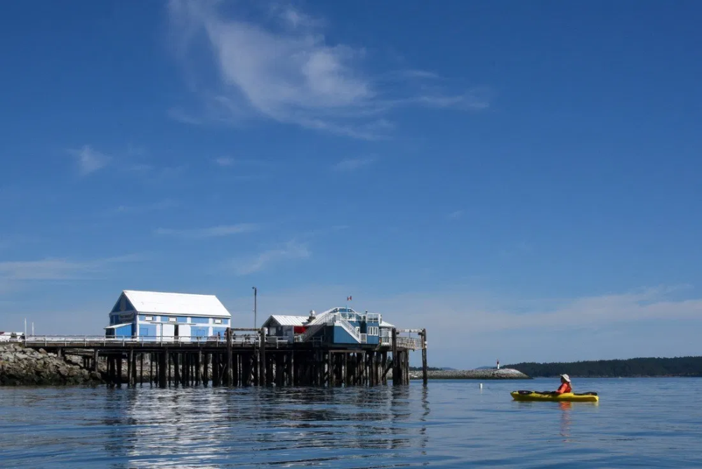 Check out these amazing, fun things to do in Sidney, B.C.
