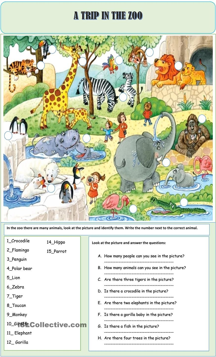 A TRIP IN THE ZOO | ESL worksheets of the day | English lessons