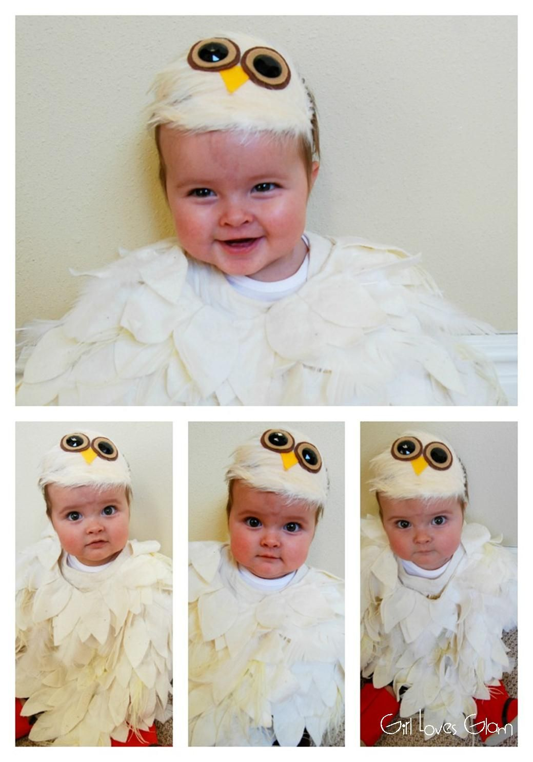 no sew baby owl costume | baby owl costumes, halloween diy and costumes