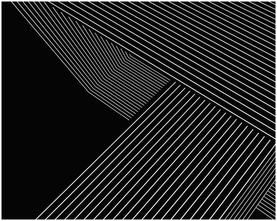 Bradley G. Munkowitz / GMUNK | Op Art
