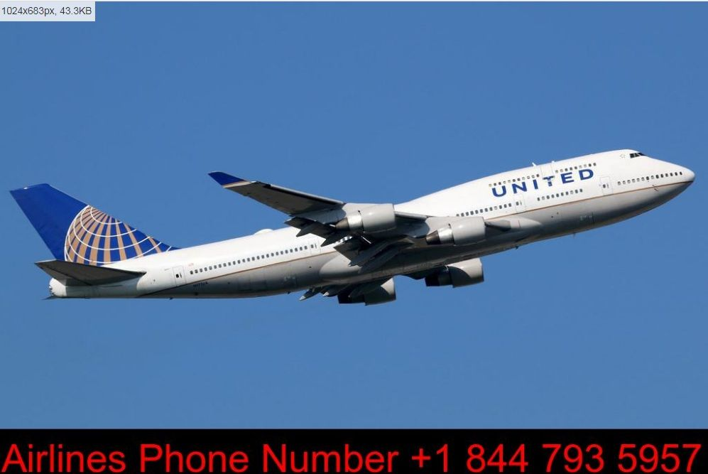 Airlines Phone Number 1 844 793 5957 Airline Reservations Book Flight Tickets Summer Vacation Destinations