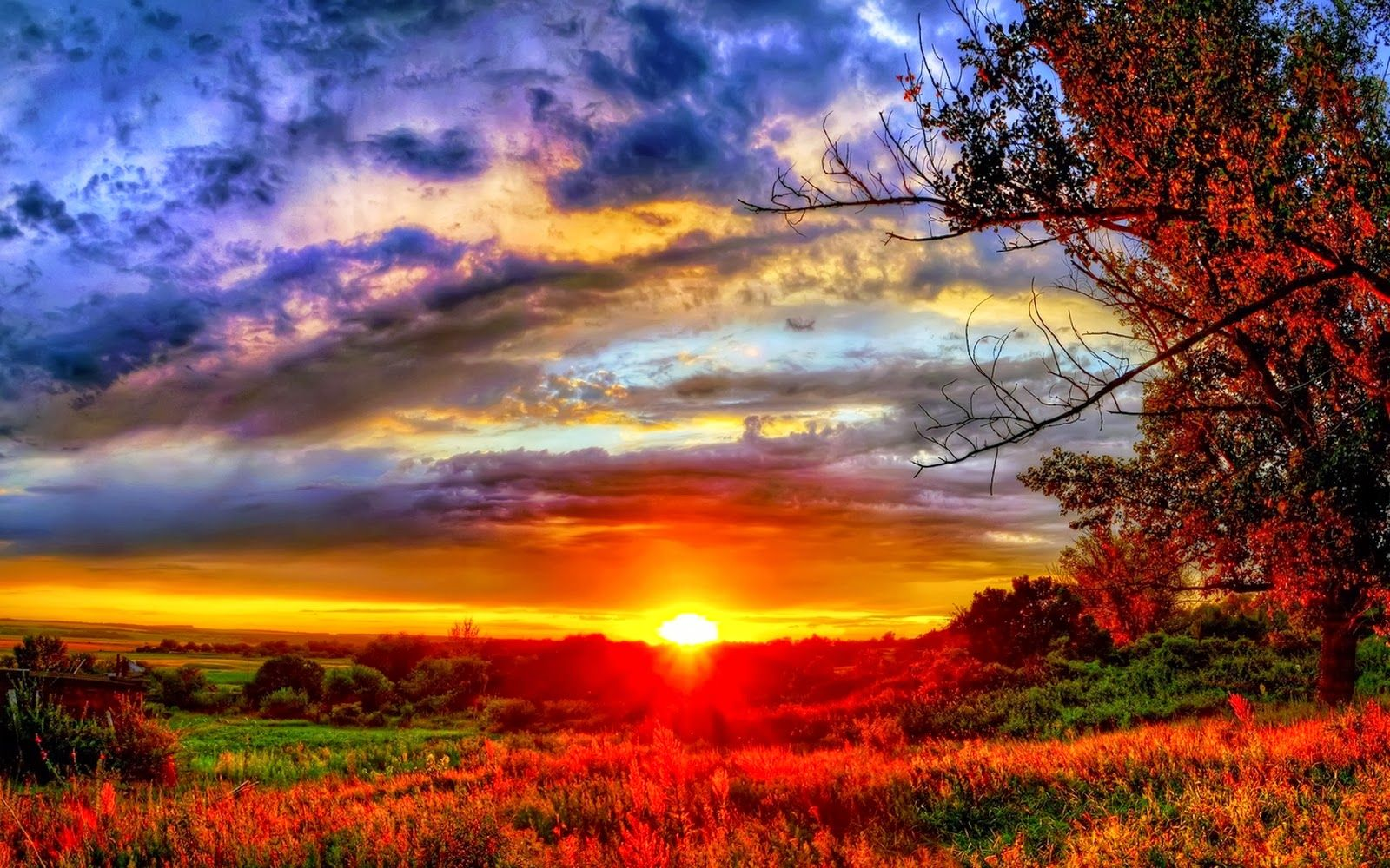 Most Beautiful Pictures Of Sunrise