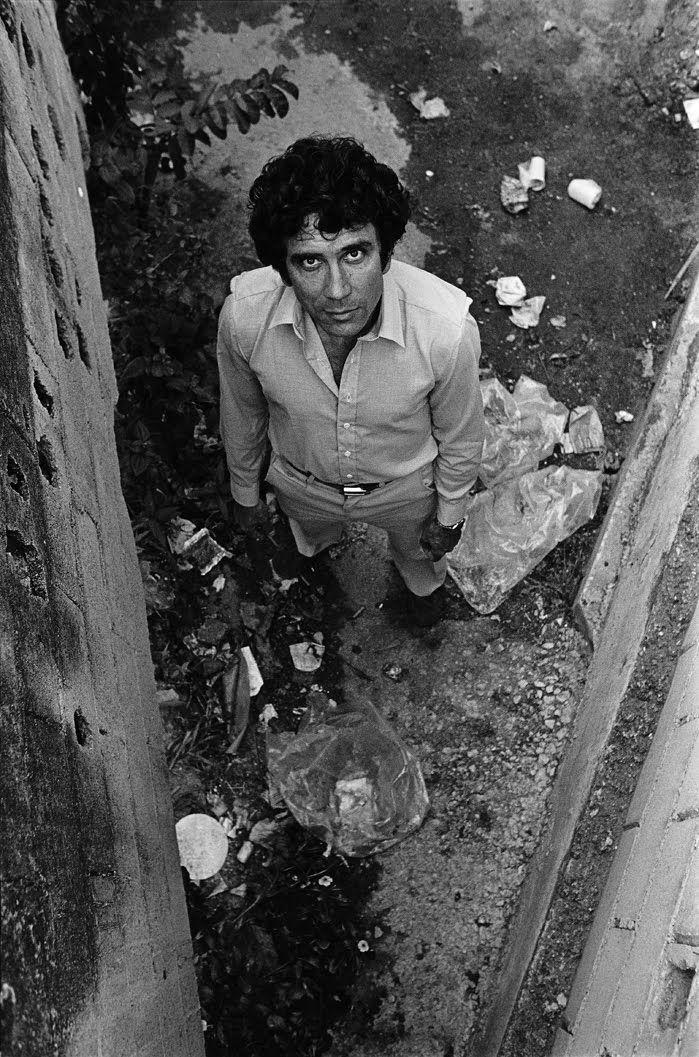 Reinaldo Arenas | The A list i...