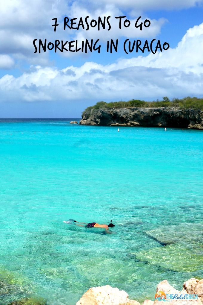 7 Reasons to Go Snorkeling in Curacao