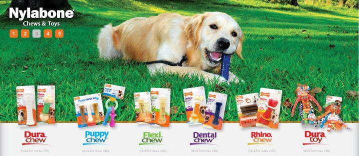 High Quality Dog Chews Edible Dog Treats Dog Toys Nylabone