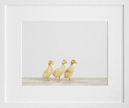 Three Ducklings, by Sharon Montrose | 20x200