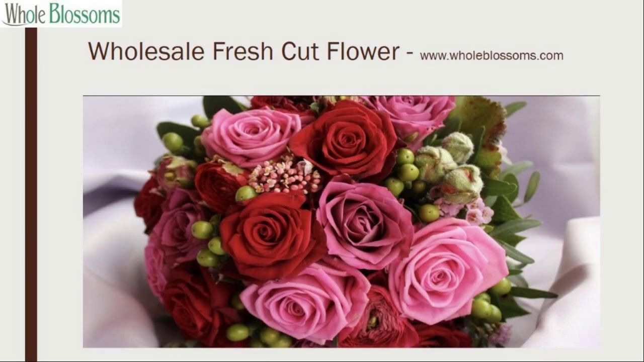 Just Make Your Evening The Best By Using The Wholesale Fresh Cut