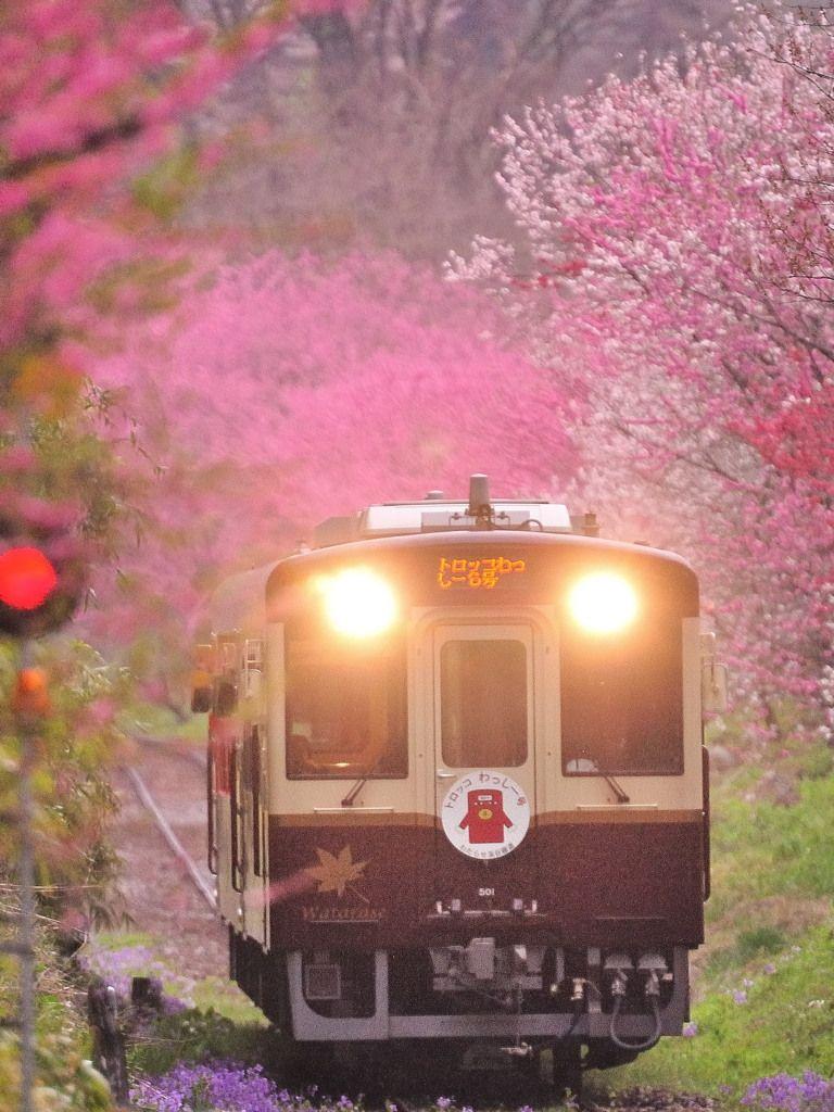 Watarase line running through Tochigi pref., Japan