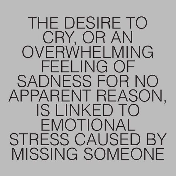 Missing Someone Quotes 33 Quotes About Missing Someone You Love  Chipmunks Depressing And .
