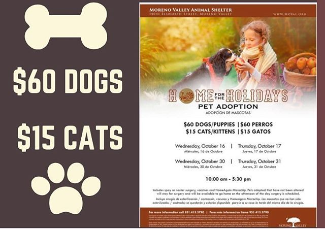 Home for the Holidays Pet Adoption Event When October 30