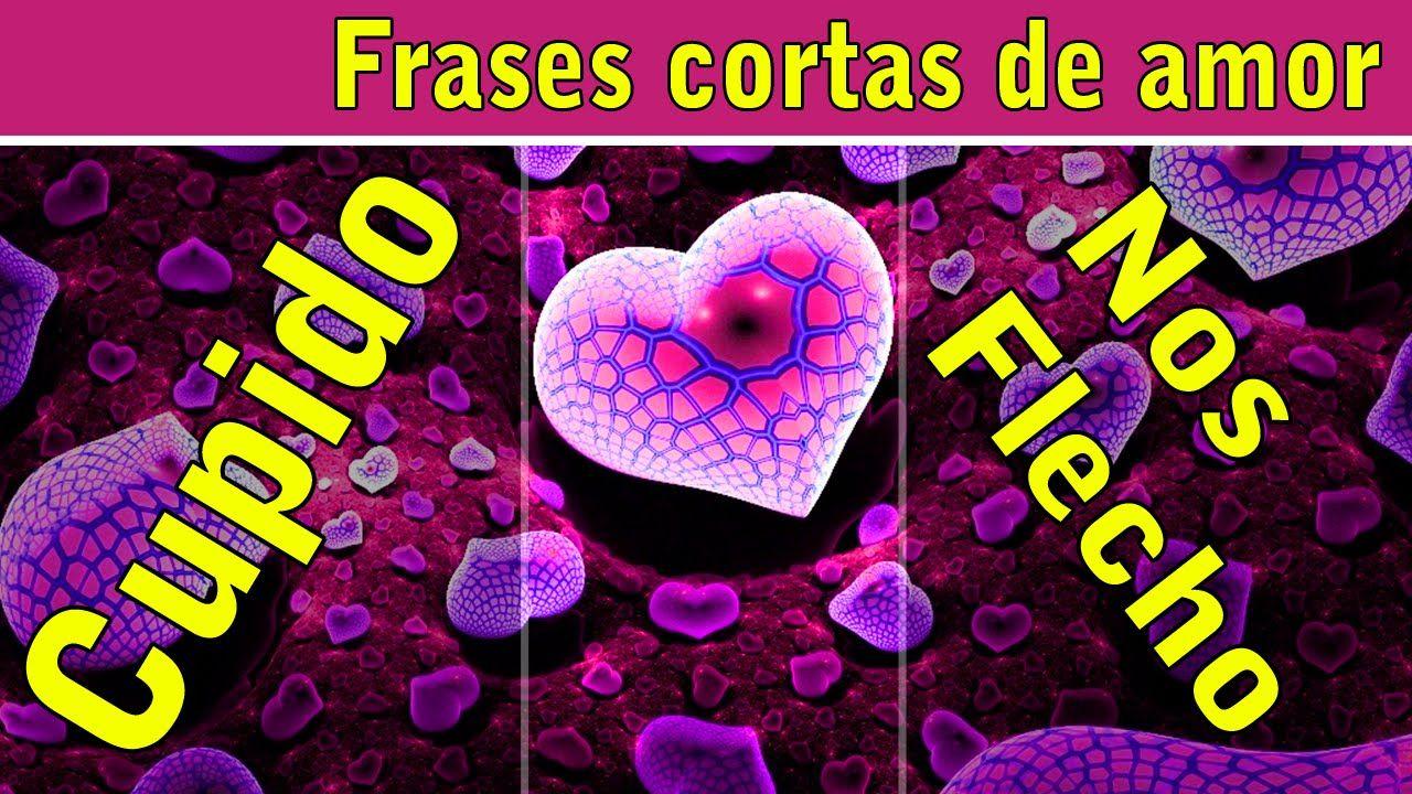 Frases De Amor Cortas Y Bonitas Para Enamorar