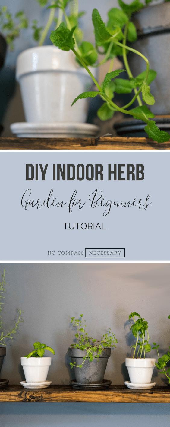Indoor Herb Gardening For Beginners Diy Herb Garden Herbs