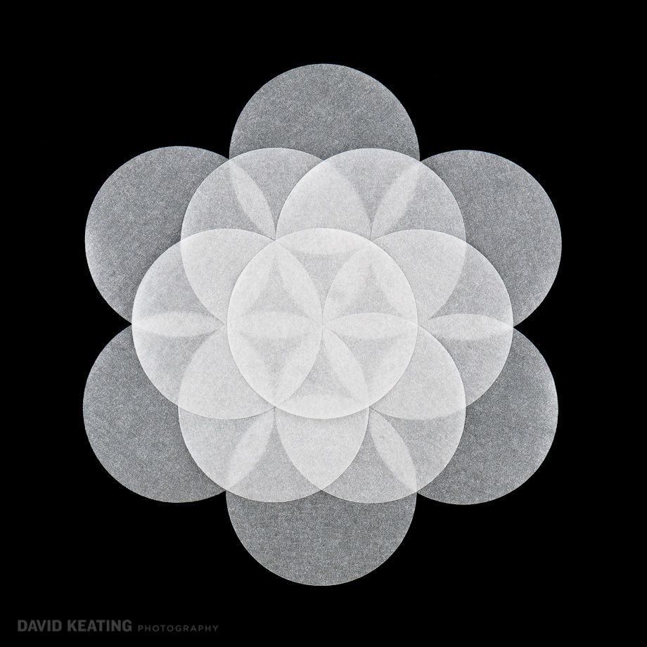 Woven Life Sacred Geometry - Denver Commercial Art Photography