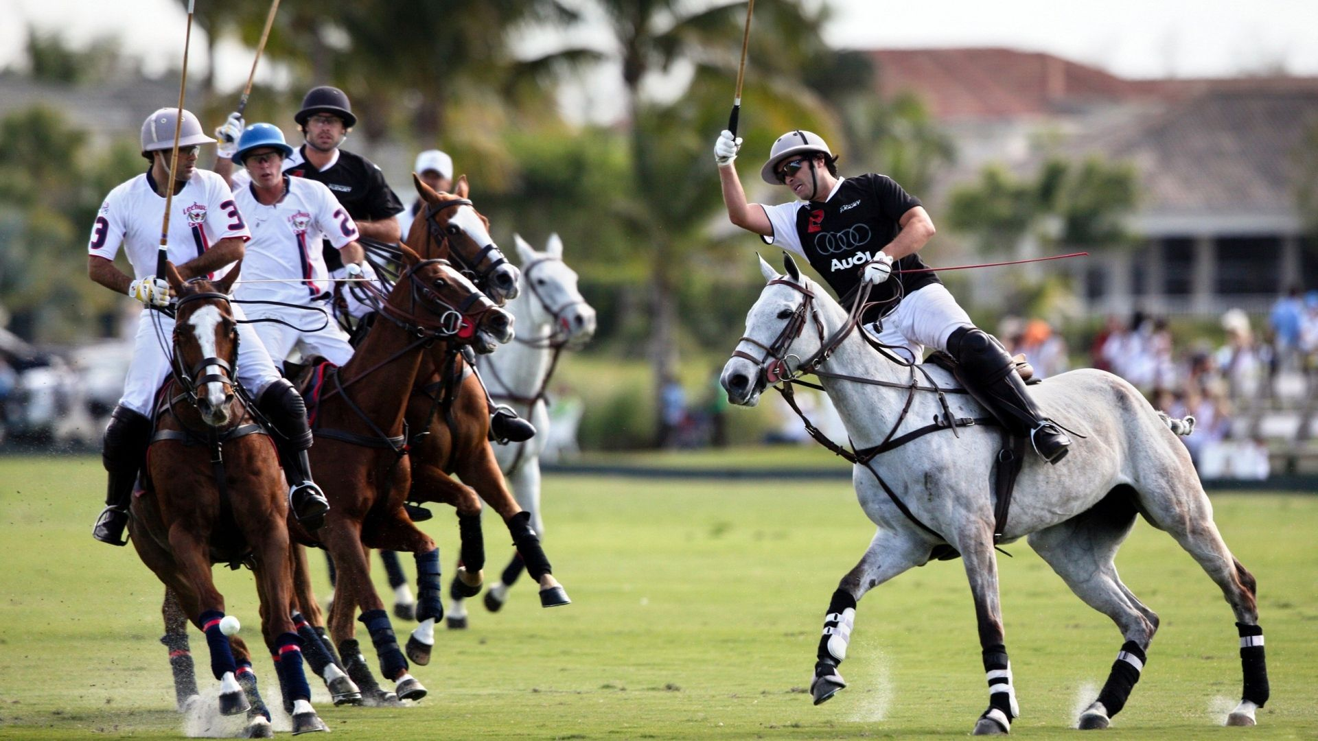 Download wallpaper 1920x1080 polo sportsmen blow horses