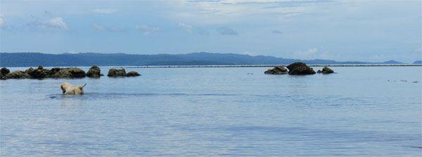 slideshow LAS 10 MEJORES ISLAS DE TAILANDIA