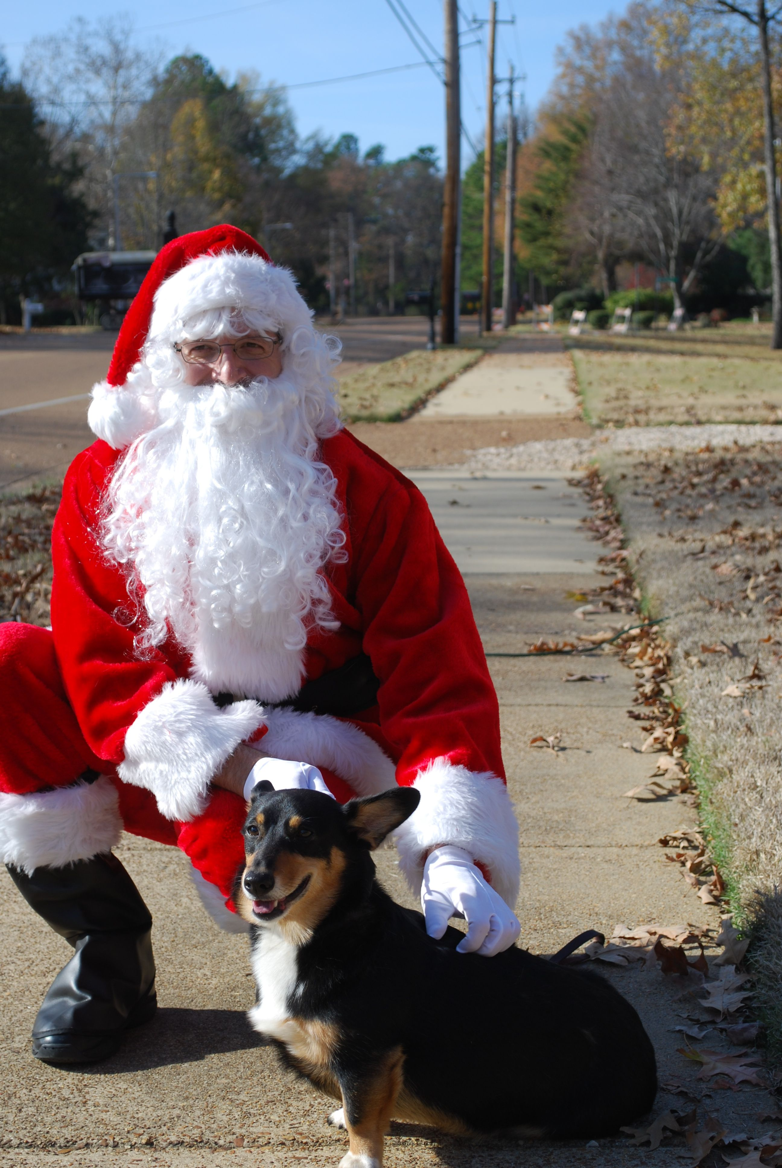 Koko knows she has been good.  She is posing with Santa.