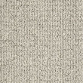 Stainmaster Uneqivocal Trusoft Driftwood Berber Carpet Sample S663012driftwoo-Wood