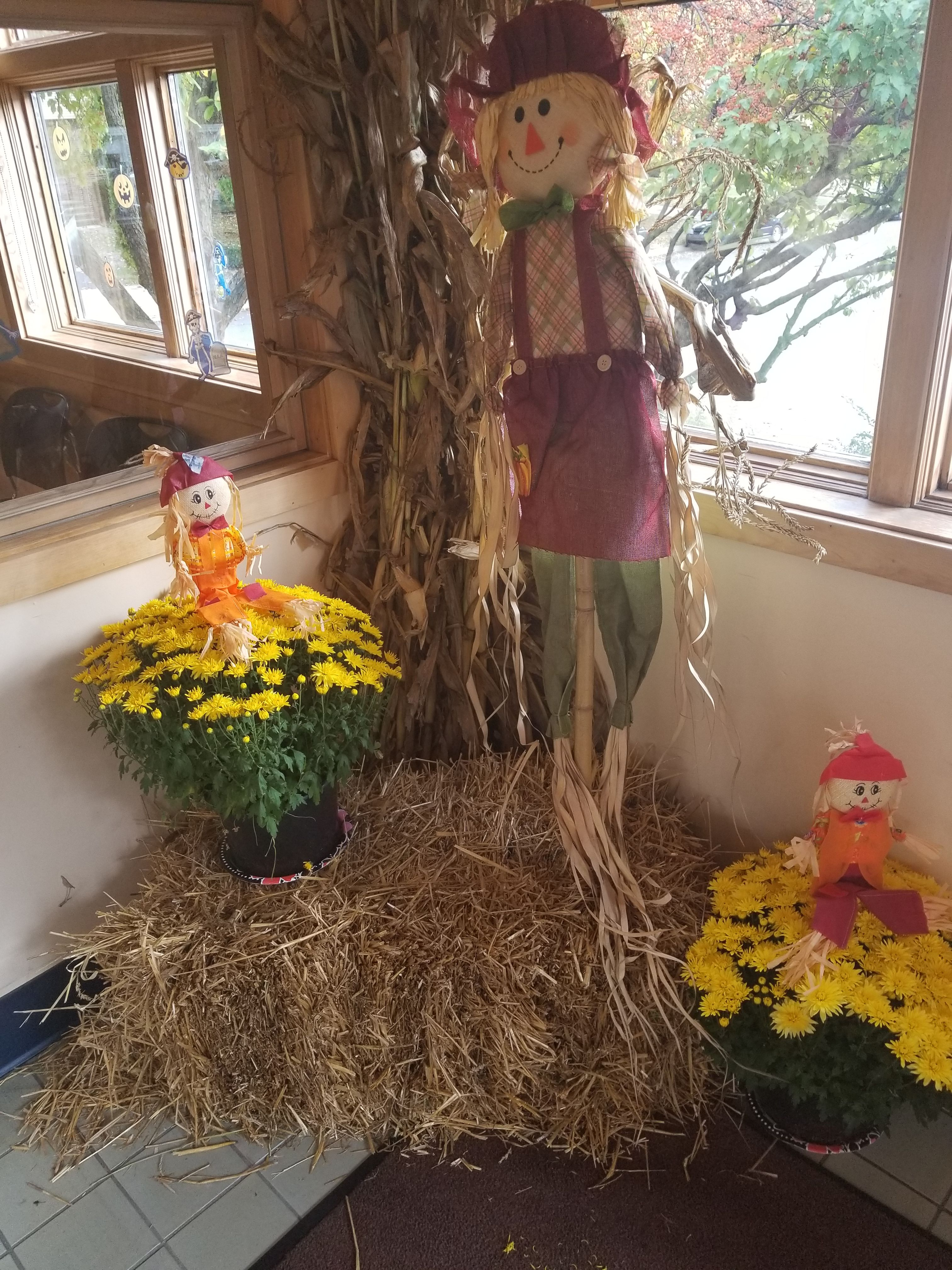 Happy fall from our team at Pediatric Associates of