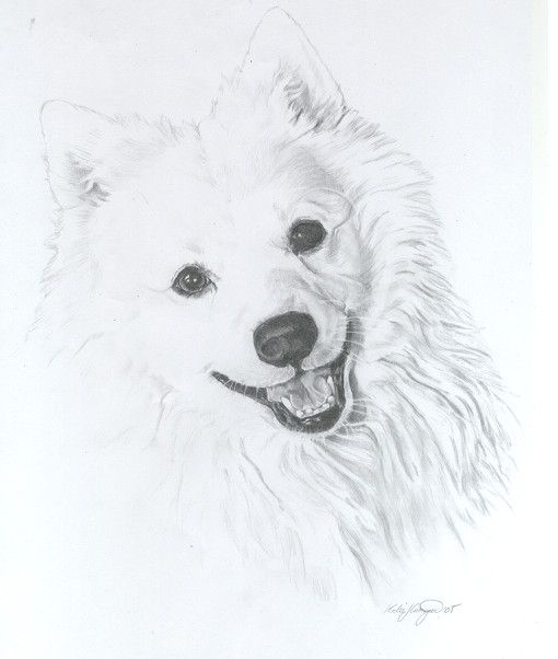 White Doggie 3 By Miss Cake Custom Dog Art Dog Print Art Dog Sketch
