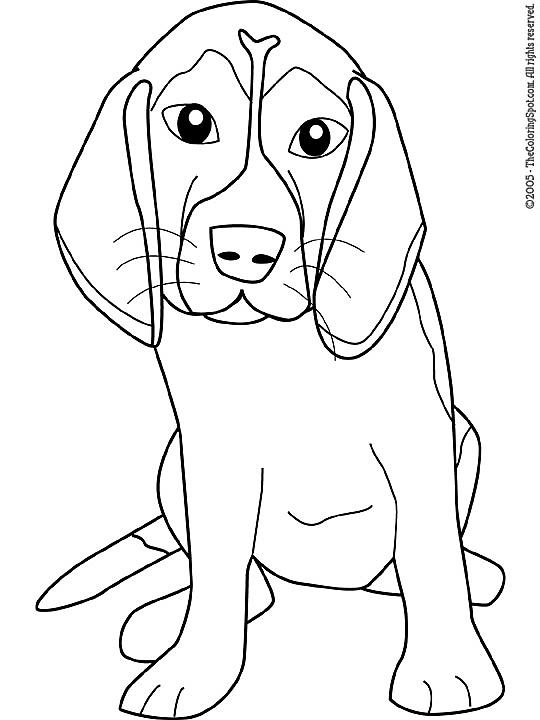 Kleurplaten Honden Labrador.Kleurplaat Honden Kleurplaten Hond Kleurplaten Honden En Kleurrijk
