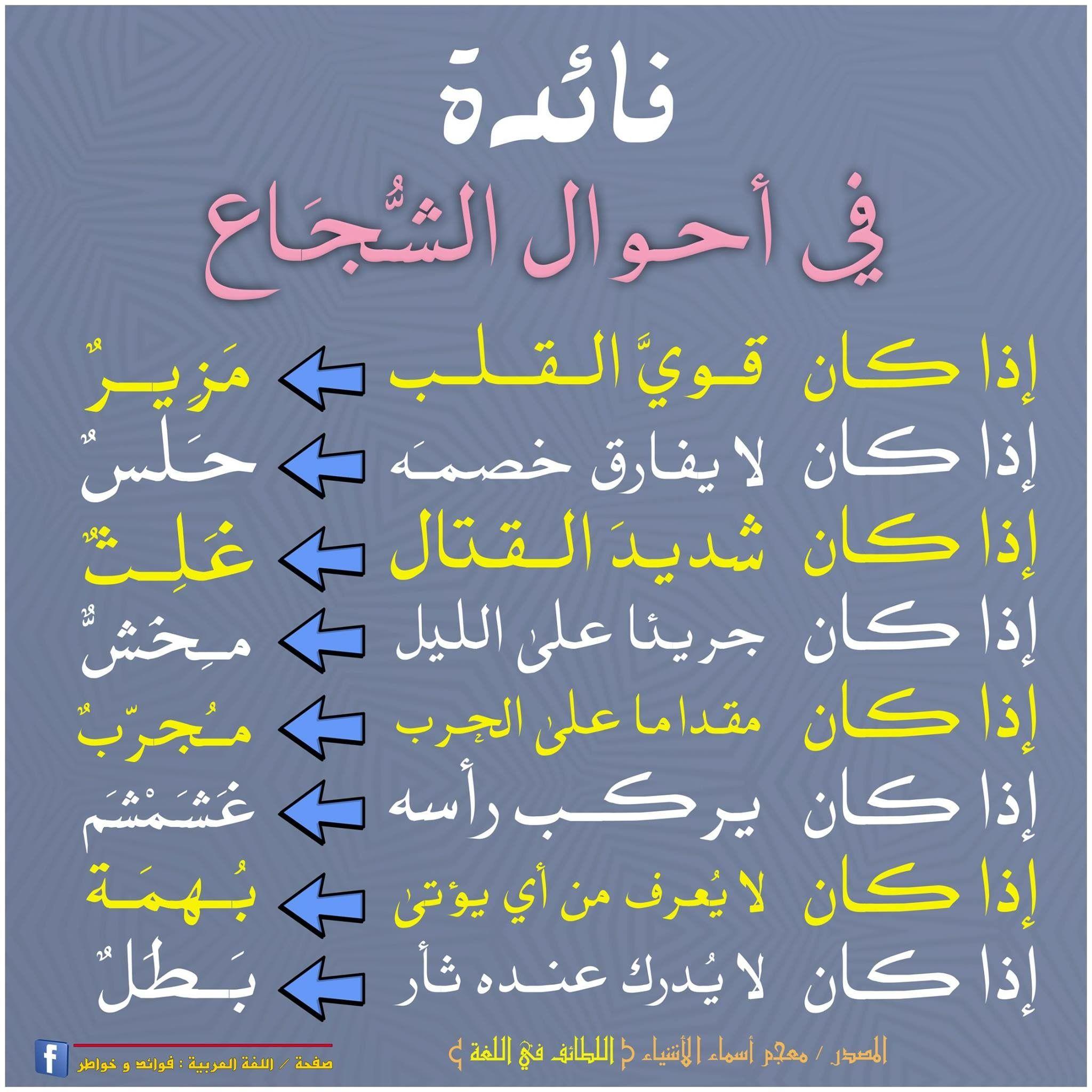 Pin By Khaled Bahnasawy On