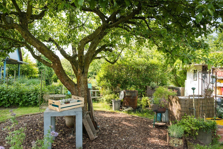 Unser Garten: Vorher-Nachher | Rosenplatz | Garten, Garten ideen und ...