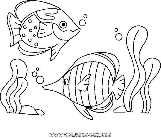 Coloriage poissons de mer coloriages coloriage poisson - Coloriage de poisson de mer ...