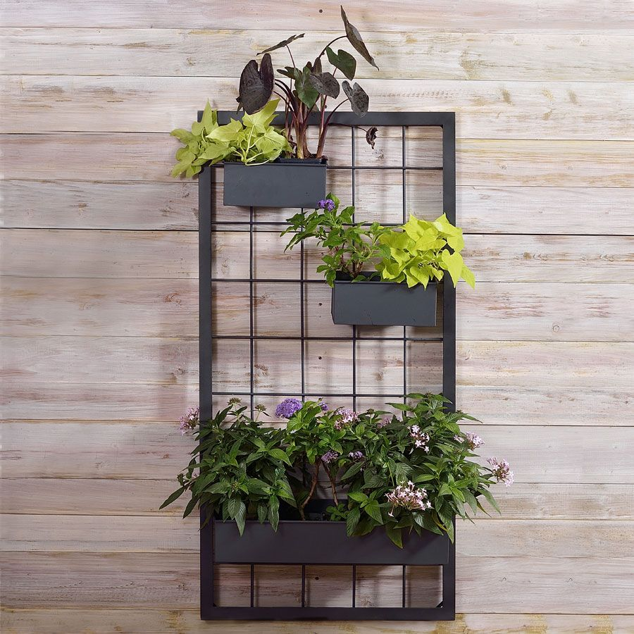 Wall Grill Trellis In Iron Wall Planters Outdoor Wall Trellis Metal Wall Planters
