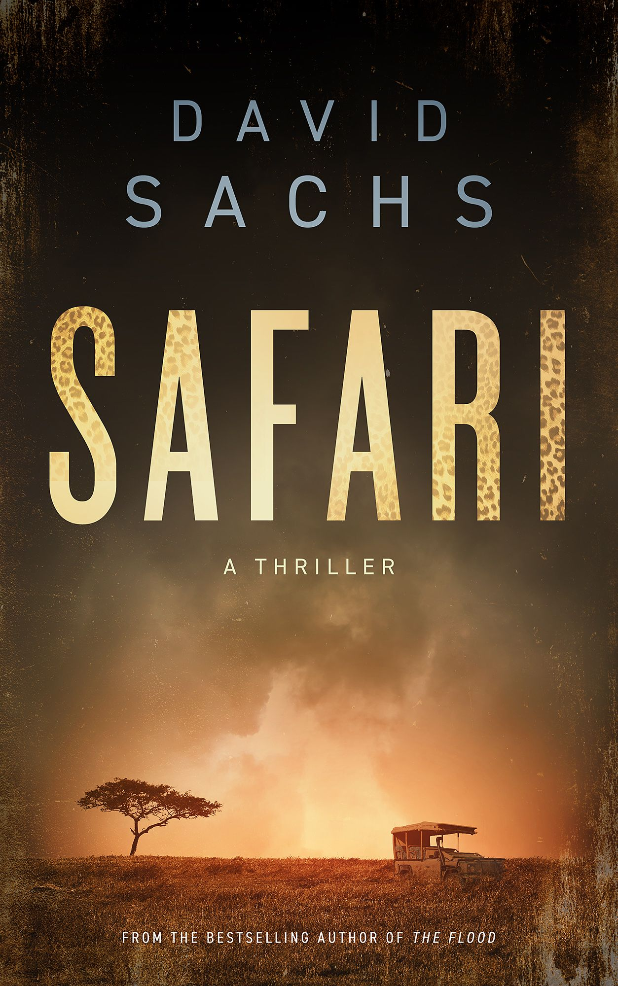 Featured book safari by david sachs bargain books