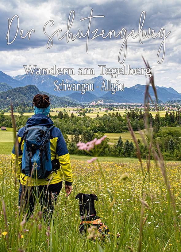 Pin Von Die Bergfreaks Auf Wandern In Bayern In 2020 Urlaub Bayern Ausflug Wandern Bayern