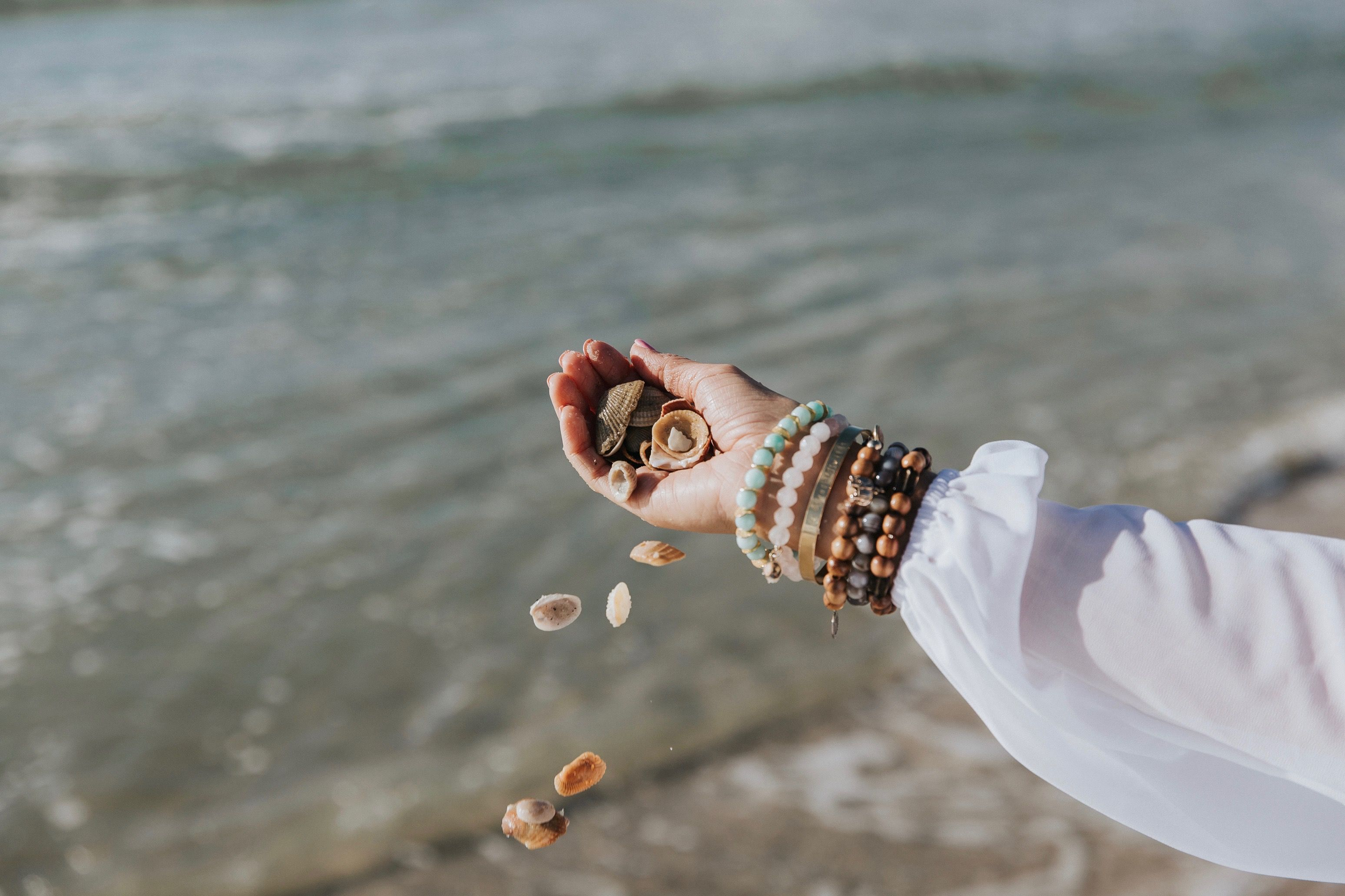 sea shells at the beach. just another artsy photo #beach #sand #shells #photooftheday