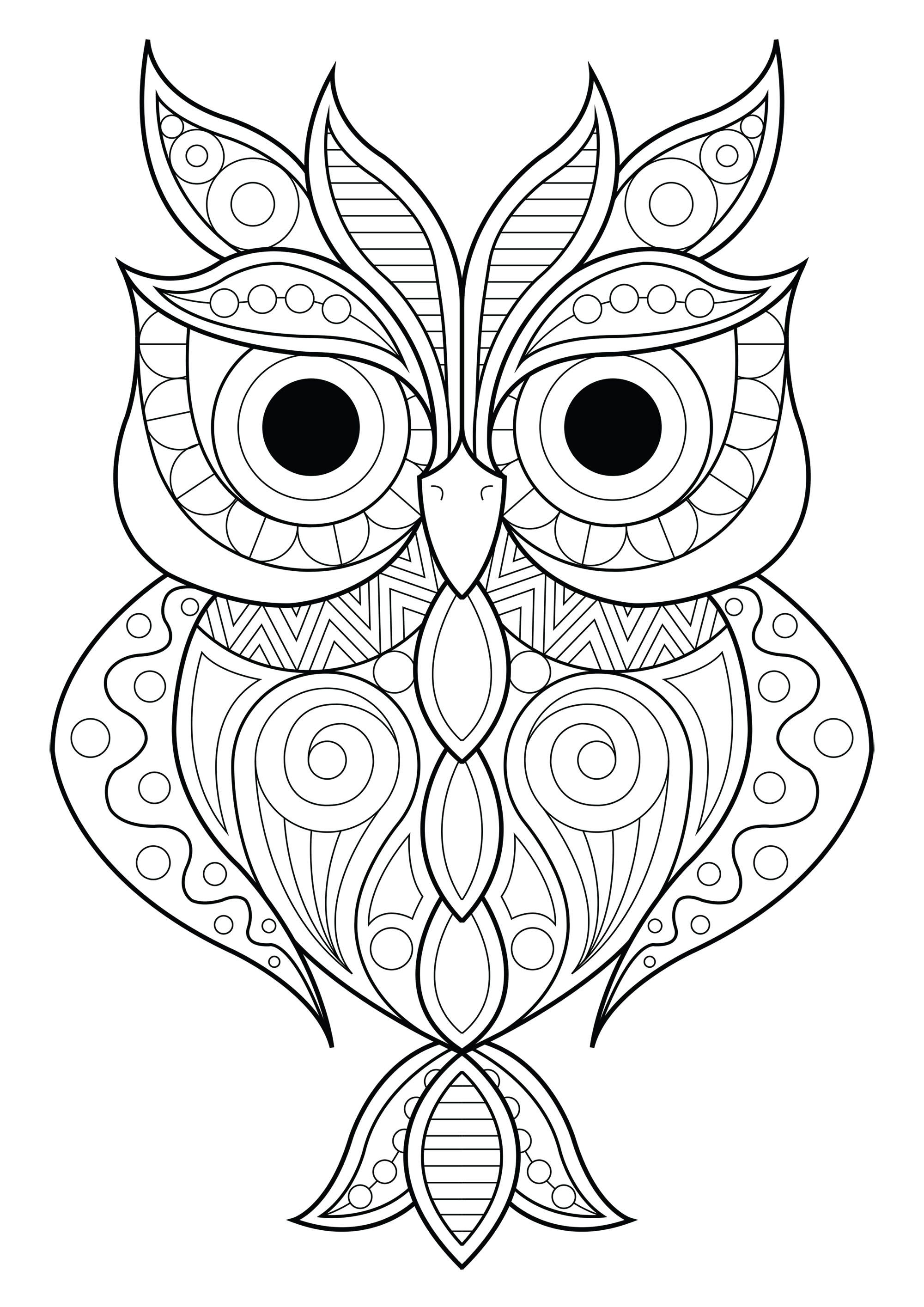 Persnickety image in printable owl coloring pages for adults