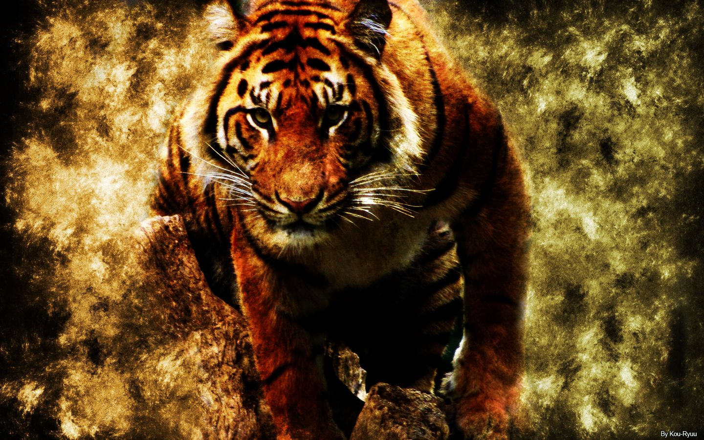 Nature Tiger Wallpaper Hd Wallpaperwonder Speical Topics