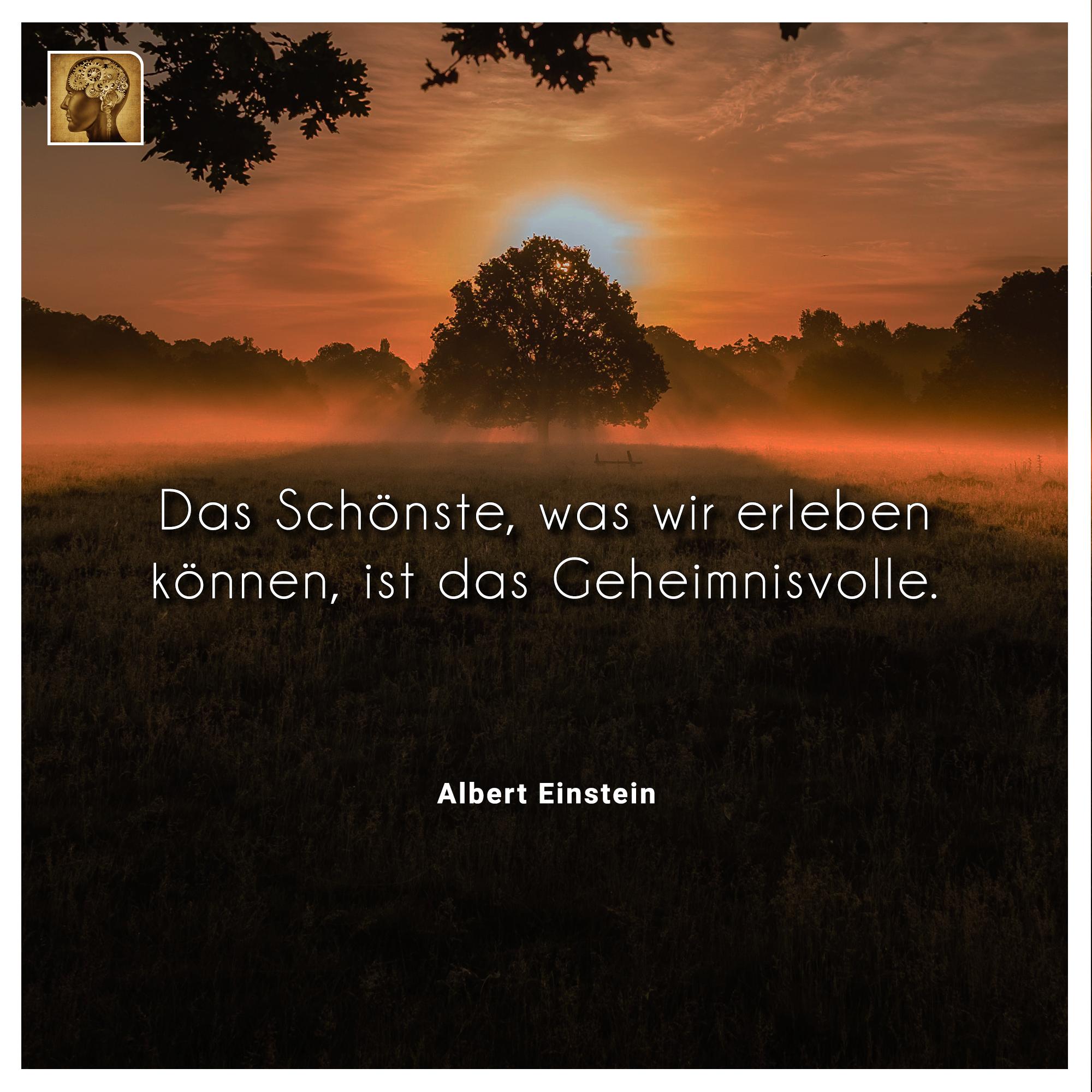 Albert Einstein Das Schonste Einstein World Instagram