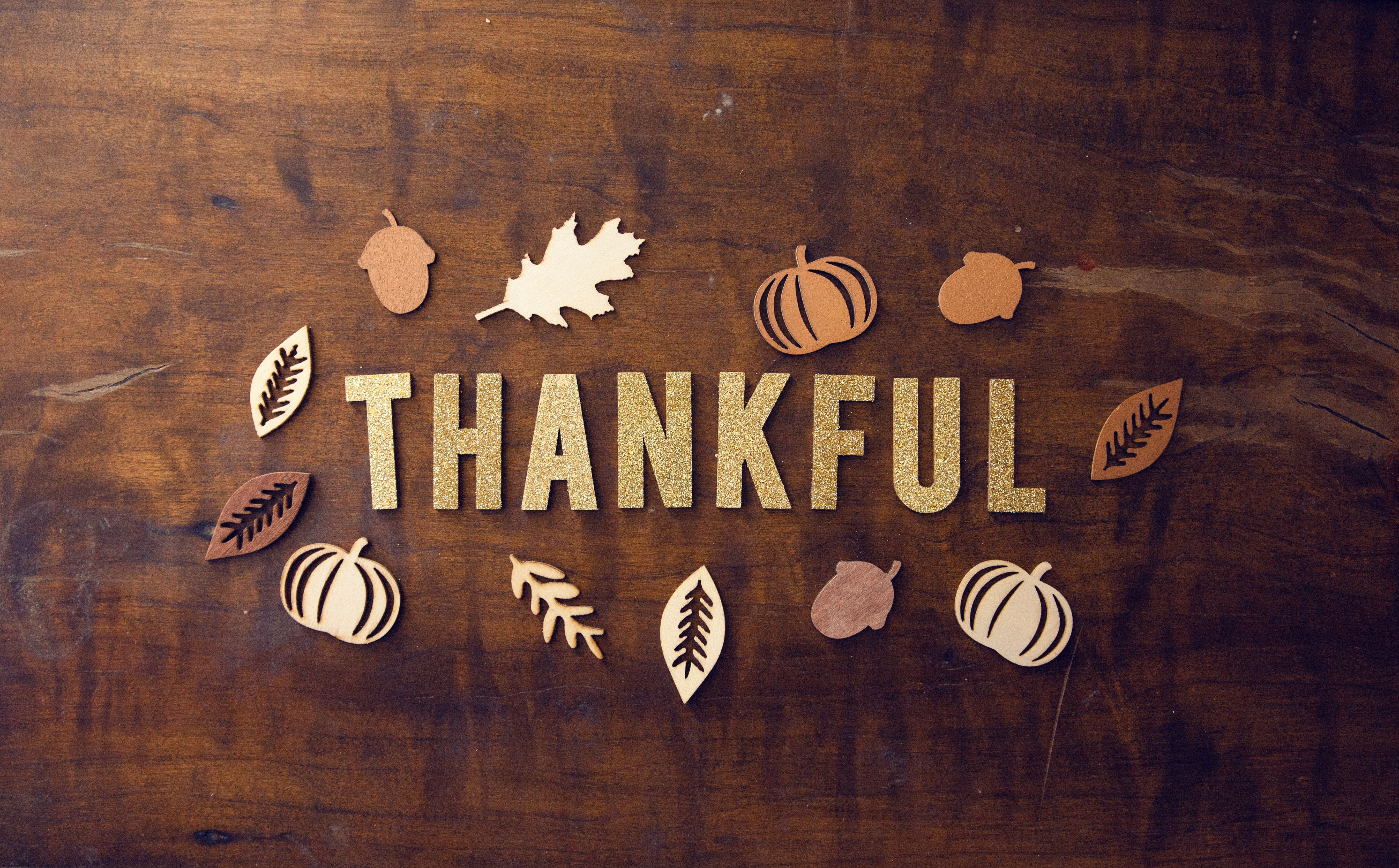 Experts Weigh In 101 Things Entrepreneurs Are Thankful For