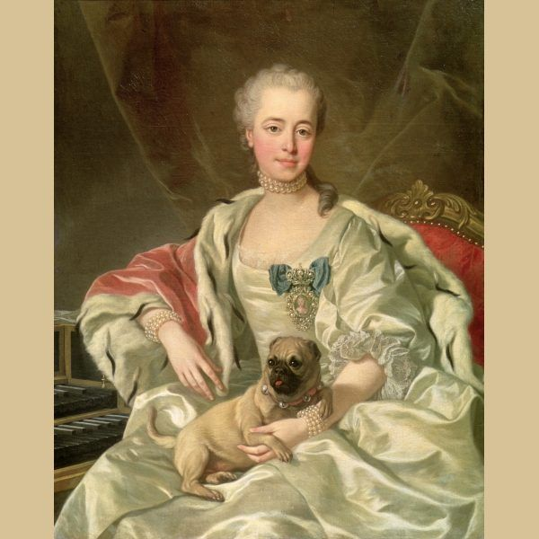 Pug History Pugs In 18th Century Art With Images Pugs Pug