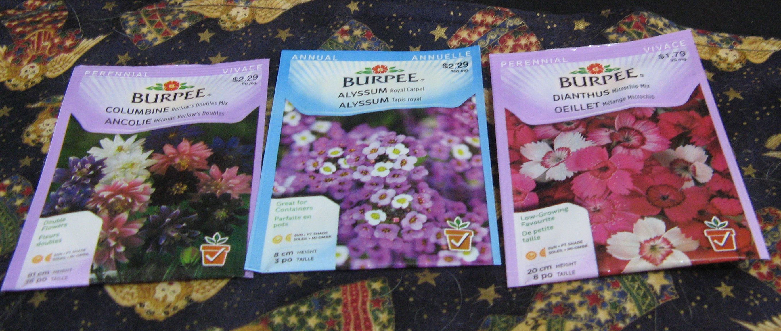 Dianthus, Columbine Barlow's Double Mix, and Royal Carpet Alyssum Seeds!