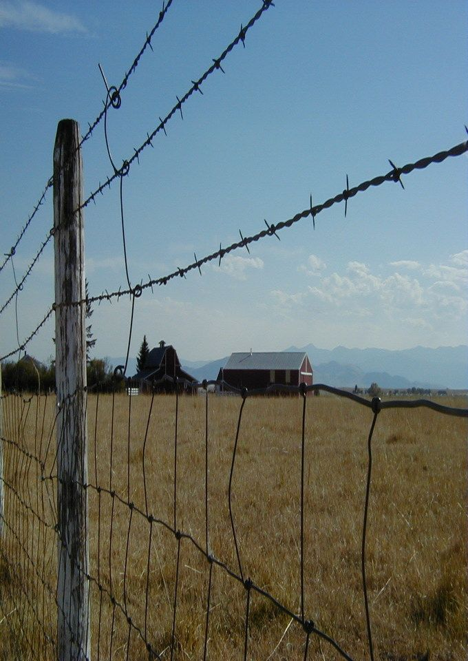 Barn Through Barb Wire Fence | Beautiful Old Barns | Pinterest ...