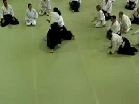 Video of Shibata Sensei demonstrating the difficult entry of