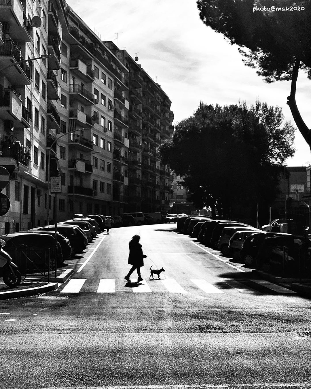 ATTRAVERSAMENTI #bnw #roma #rome #phonephotographer #iphonography #viasabaudia #dogsandwomen #stepbystepinrome #streetphotografyinternational #streetview #phonephotography #streetlife #grigio18 #phonecamera #zonestreet #streetcapture #streetphotographer #cornerofthecity #capturestreets #capturestreetshot #instashot #mobile_photography #iphone6splus #monochromatic #mobilephotography #streetfeat #streetphotographyintheworld #visionofpicture #corsofotografico #blackandwhitephotography